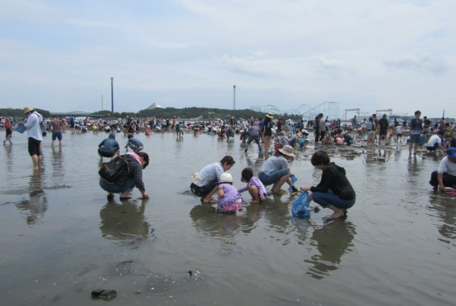 潮干狩りをする時間帯はいつ?潮の引くタイミングを調べる!